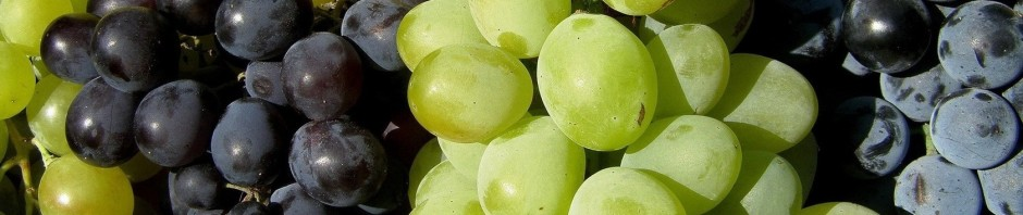 12533-grapes-1680x1050-photography-wallpaper.jpg