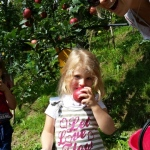 buone le mele de keldipom!!