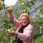 la nonna ed il suo raccolto